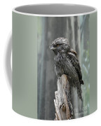 Interesting Tawny Frogmouth Perched On A Tree Stump Coffee Mug