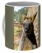 Interview With A Swamp Wallaby Coffee Mug
