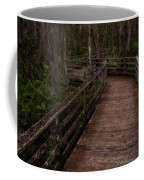 Into Audubon Corkscrew Swamp Sanctuary Coffee Mug