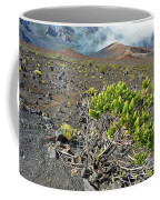 Into The Crater Coffee Mug
