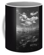 Into The Everglades Coffee Mug
