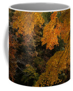 Into The Fall Coffee Mug