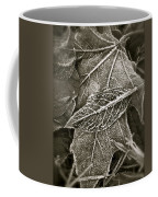 Intricately Frosted Coffee Mug