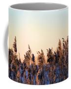 Iowa Cane Coffee Mug