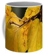 Iridescence Coffee Mug