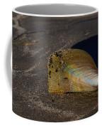 Iridescent Pen Shell  Coffee Mug