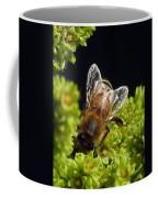 Iridescent Wings Coffee Mug