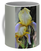 Iris Beauty Coffee Mug