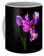 Iris Bloom Two Coffee Mug
