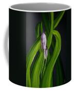 Iris Buds  49 Coffee Mug