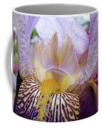 Iris Flower Art Purple Lavender Irises Giclee Prints Baslee Troutman  Coffee Mug