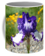 Iris Flower Purple White Irises Nature Landscape Giclee Art Prints Baslee Troutman Coffee Mug
