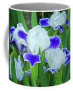 Iris Flowers Art Prints Blue White Irises Floral Baslee Troutman Coffee Mug