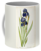 Iris Germanica Coffee Mug by Pierre Joseph Redoute