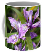 Iris Haiku Coffee Mug