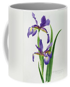 Iris Monspur Coffee Mug