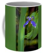 Iris On Green Coffee Mug