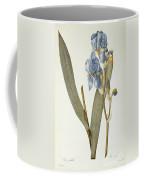 Iris Pallida Coffee Mug by Pierre Joseph Redoute
