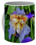 Iris Rain Blue Coffee Mug
