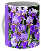 Iris Splendor Coffee Mug