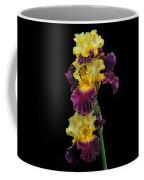 Iris Triple Coffee Mug
