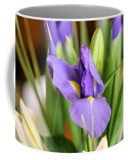Iris Unfolding II Coffee Mug