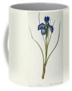 Iris Xyphioides Coffee Mug by Pierre Joseph Redoute