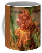 Iris_dsc4793_16 Coffee Mug
