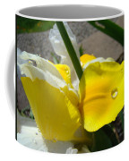 Irises Artwork Iris Flowers Art Prints Flower Rain Drops Floral Botanical Art Baslee Troutman Coffee Mug