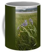 Irises By The Sea Coffee Mug