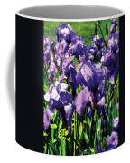 Irises Princess Royal Smith Coffee Mug
