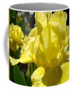 Irises Yellow Iris Flowers Floral Art Prints Botanical Garden Artwork Giclee Coffee Mug