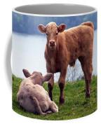 Irish Calves At Lough Eske Coffee Mug