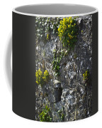 Irish Stone Flowers Coffee Mug