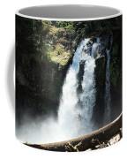 Ironhead Falls Coffee Mug
