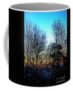 Irreplaceable Beauty Coffee Mug