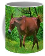 Irritated Horse Coffee Mug