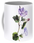 Isabella Sinclair - Pohue Coffee Mug