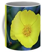 Island Bush Poppy In Rancho Santa Ana Botanic Garden In Claremont-california  Coffee Mug