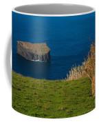 Islet Coffee Mug