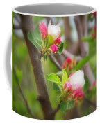 It Is Spring Time In The Annapolis Valley Coffee Mug