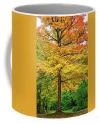 It You've Got It, Flaunt It Coffee Mug