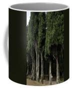 Italian Cypress Trees Line A Road Coffee Mug