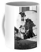 Italian Greyhounds In Black And White Coffee Mug