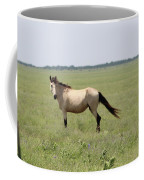 It's A Horse Of  Course Coffee Mug