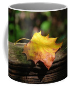 Its Fall Coffee Mug