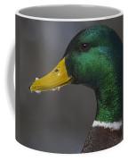 It's Not Easy Bein' Green Coffee Mug