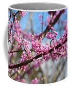 It's Spring 2016 Coffee Mug