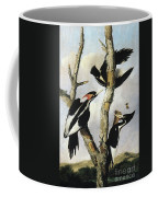 Ivory-billed Woodpeckers Coffee Mug