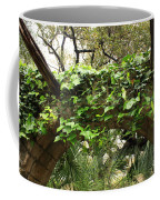 Ivy-covered Arch At The Alamo Coffee Mug